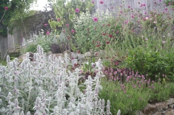 low maintenance borders