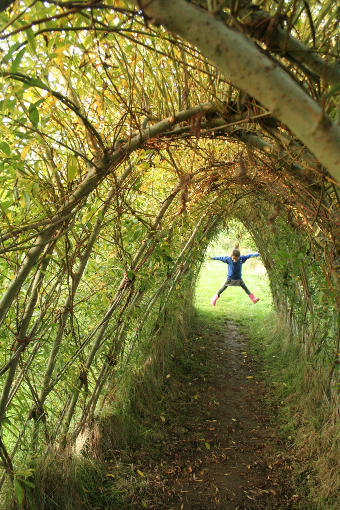 Beautiful living willowtunnel…..