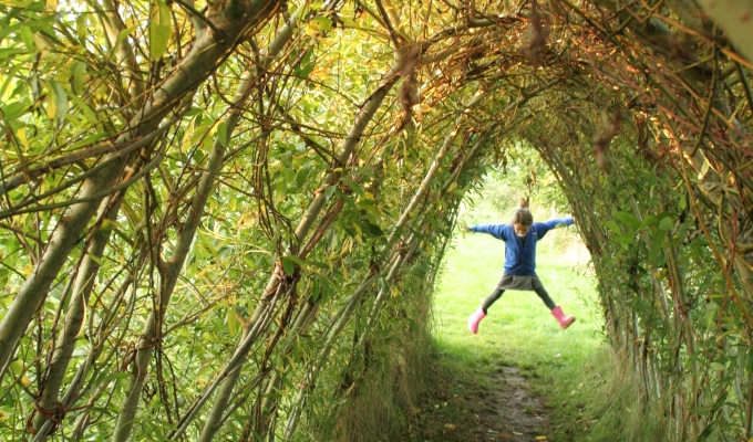 Beautiful living willow tunnel…..