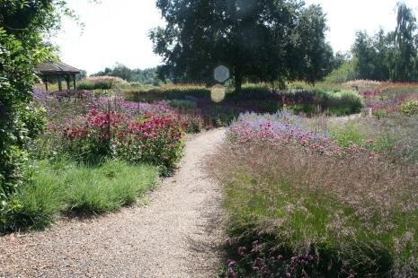 Millennium garden, Pensthorpe. Norfolk
