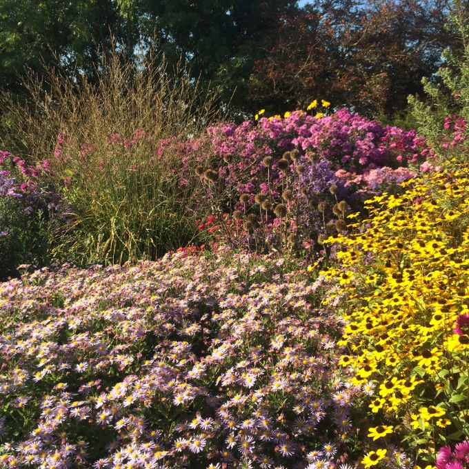 Autumn Garden Inspiration – Norwell nurseries.