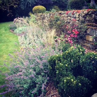 Exposed Garden; Curbar