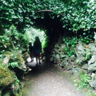 The tunnels structure is hidden by ivy