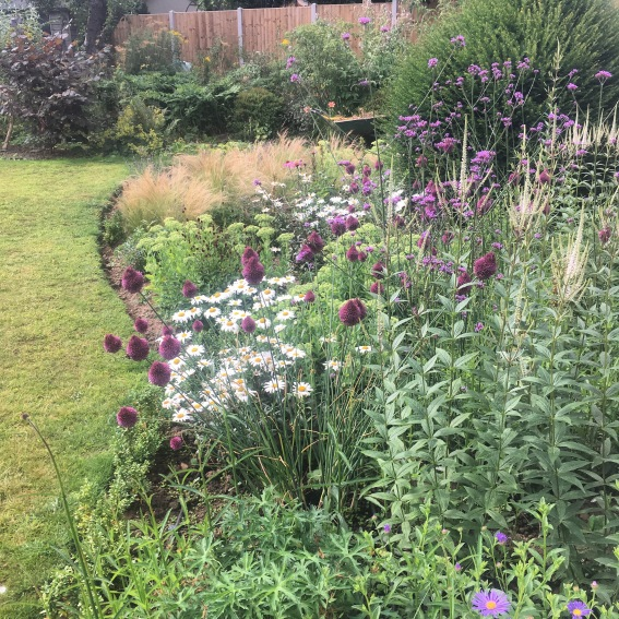 Allestree Garden